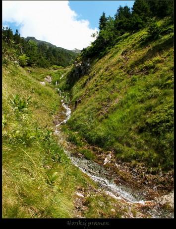 Izvori, potoci i rijeke - Page 6 Horsky-pramen